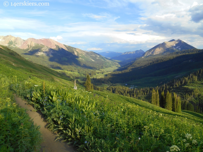 Evening light on trail 401 near Crested Butte