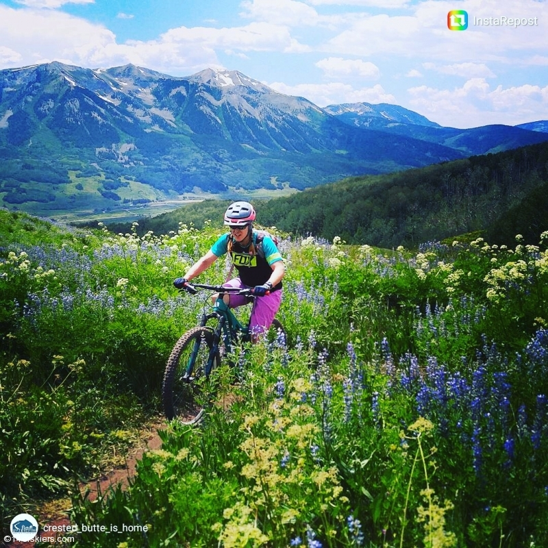 Riding among the wildflowers in July!