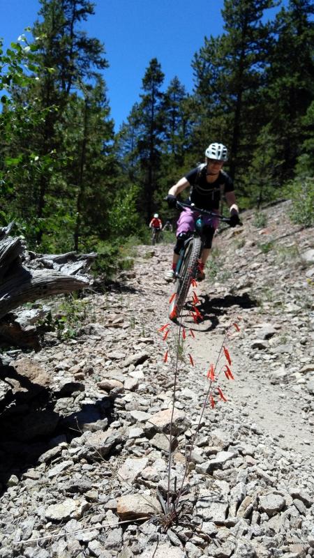 chunder trail