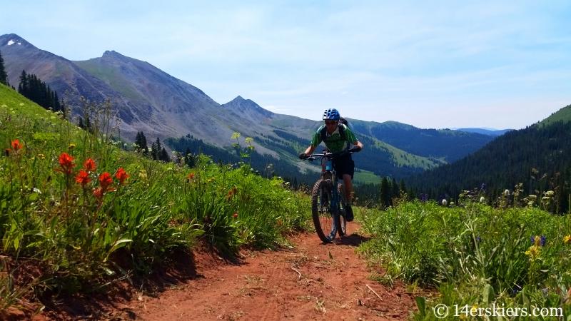 Frank Konsella mountain biking trail 583 near Crested Butte.
