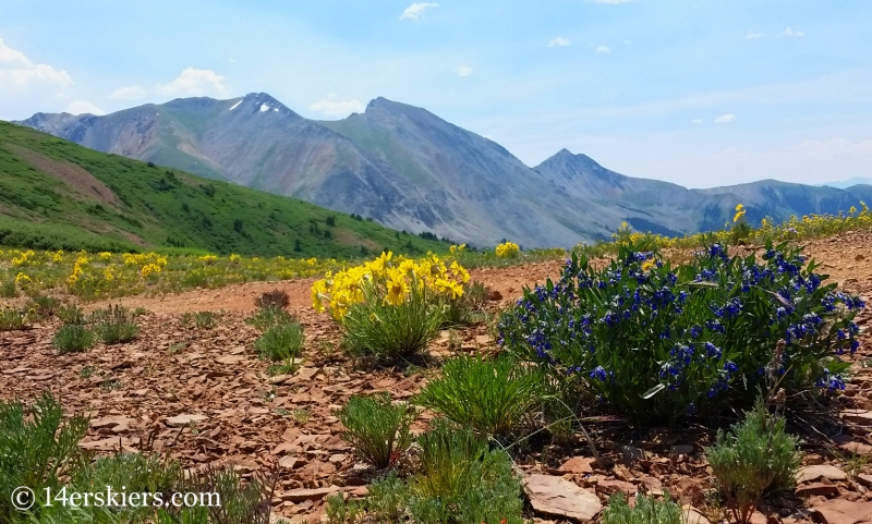 Views from 583 near Crested Butte.
