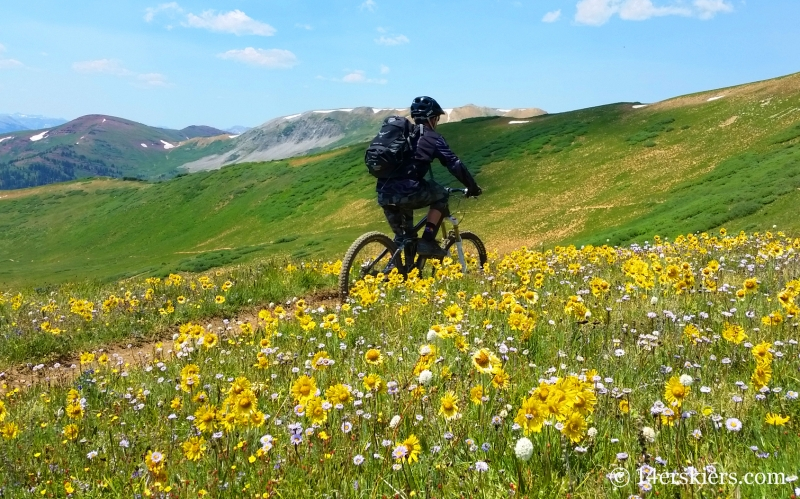 Larry Fontaine mountain biking Star Pass near Crested Butte.