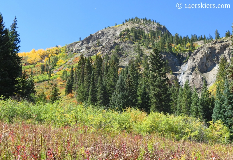 Meadow near Anthracite Falls near Crested Butte