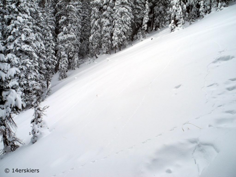 Avalanche awareness while backcountry skiing.