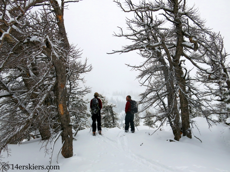 Backcountry skiing the Bear Lake zone in Rocky Mountain National Park.