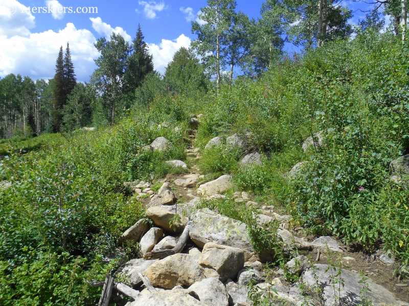 Beckwith Bench trail near Crested Butte