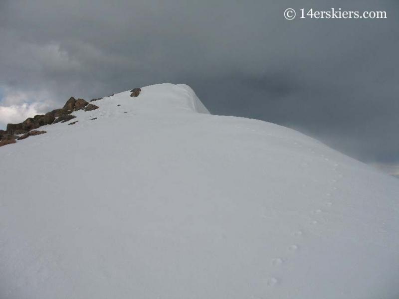 Mountain goat tracks on Mt. Bierstadt.