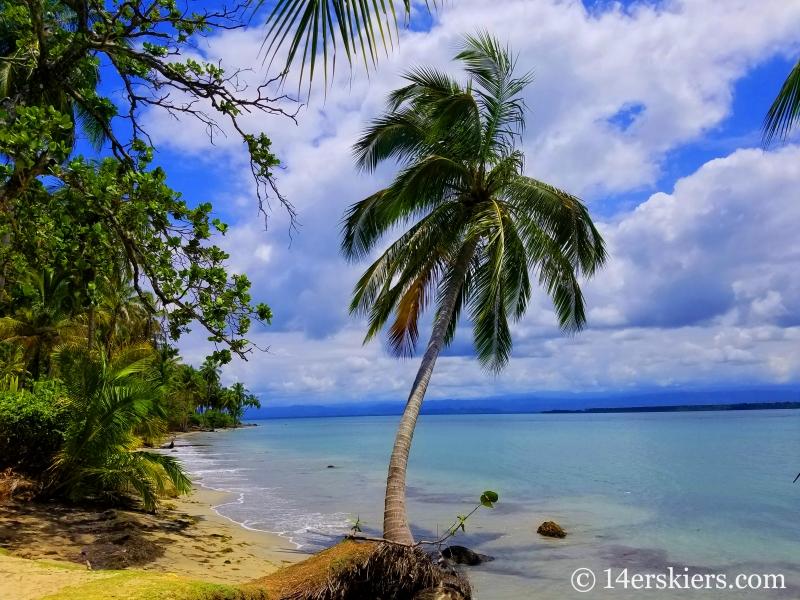 Hike to Starfish Beach in Panama.