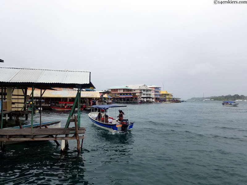 bocas water taxis