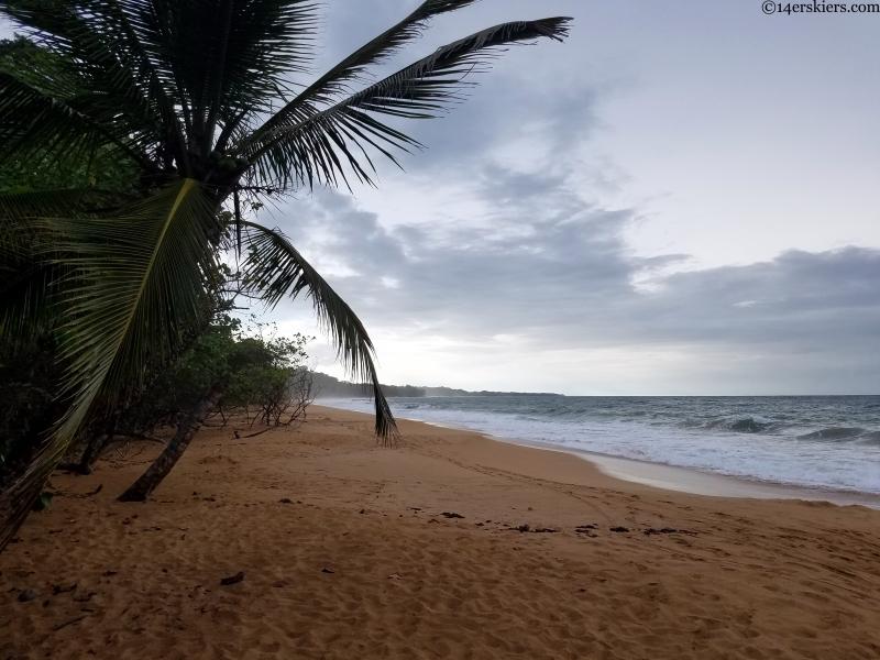 bocas beach