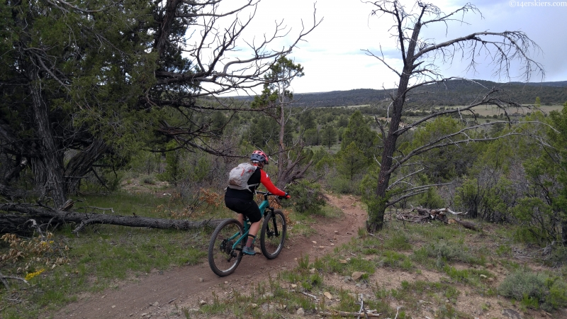bean canyon boggy draw mtb