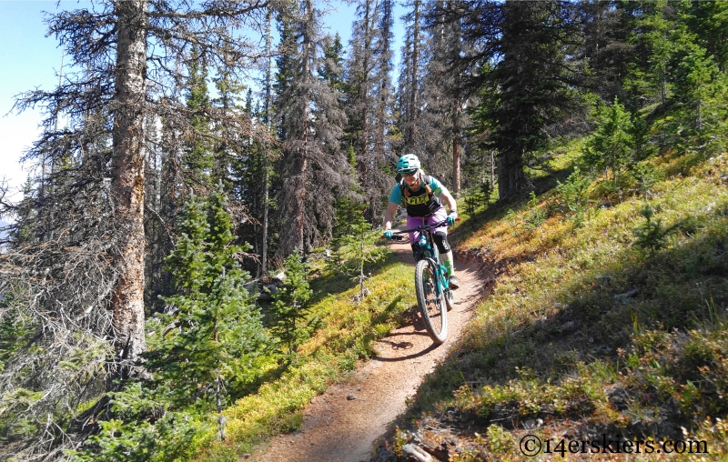 Mountain biking Boss Lake near Monarch Pass