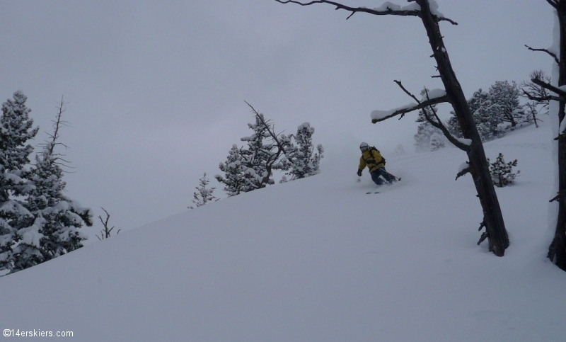 Skiing in bounds and backcountry at Bridger Bowl.