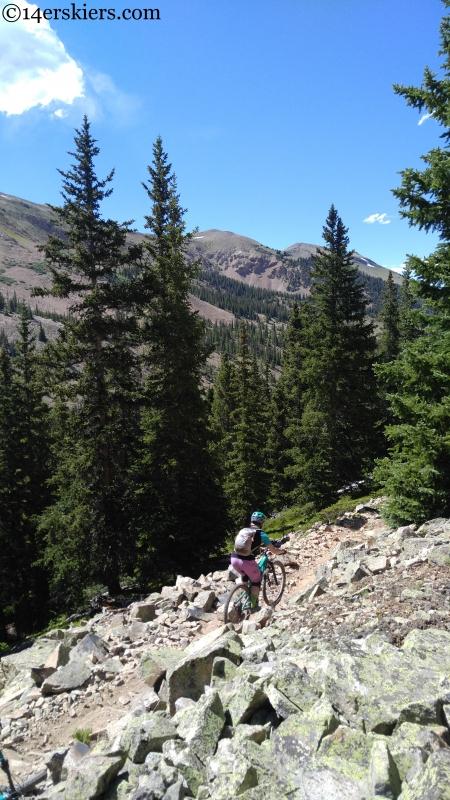 taylor park mountain biking