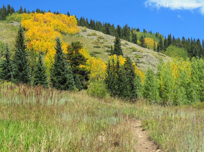 hiking Carbon Creek near Crested Butte