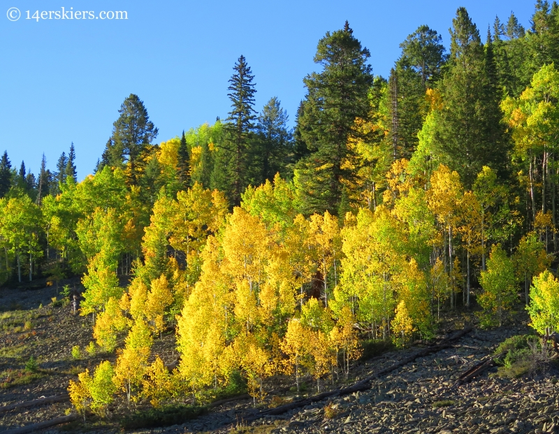 hiking Carbon Creek in fall near Crested Butte