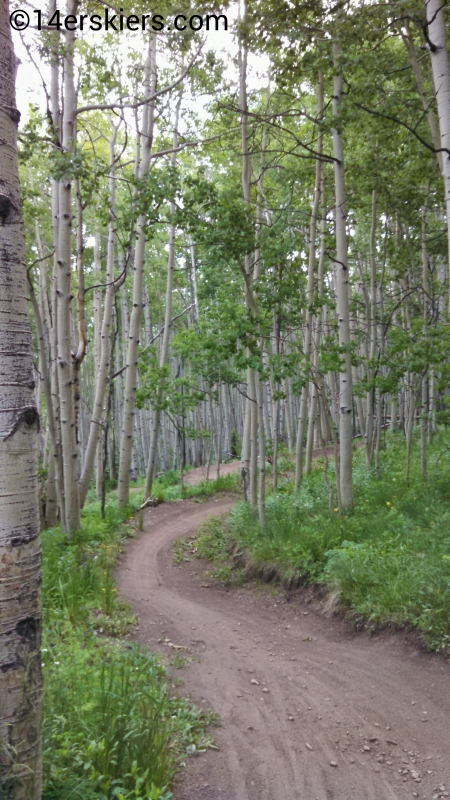 Awakening trail at Crested Butte Mountain Resort