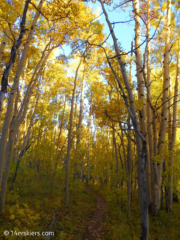 fall at Crested Butte Mountain Resort