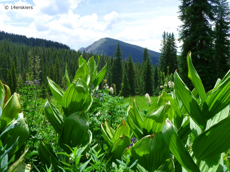 Copley Lake Hike near Crested Butte, CO.