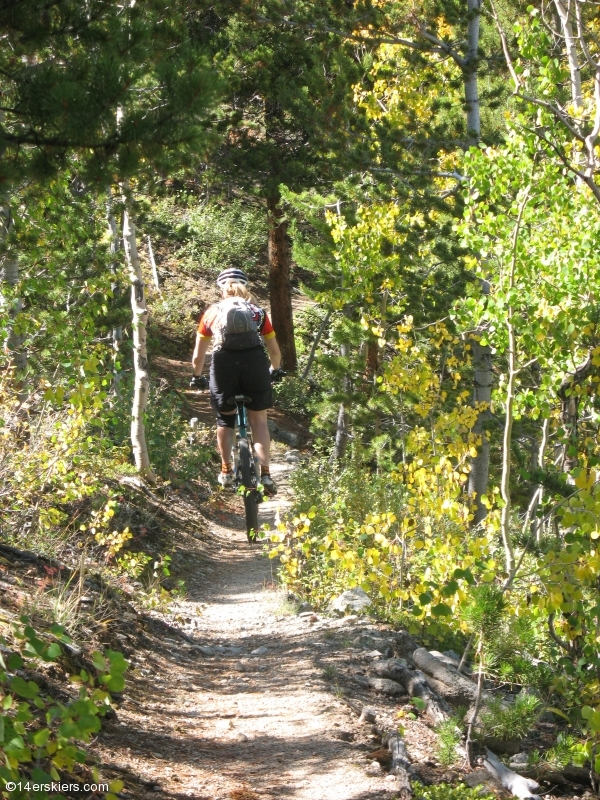 Mountain biking Mount Princeton section of Colorado Trail