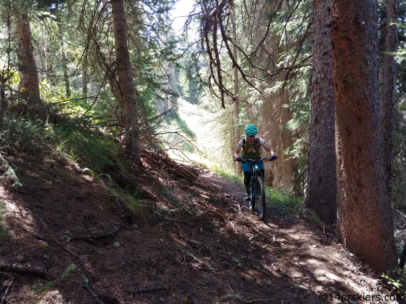 MTB curecanti trail gunnison national forest