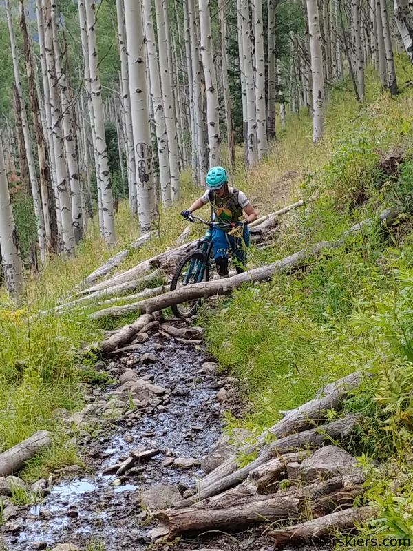 south dyer creek mountain biking west elks