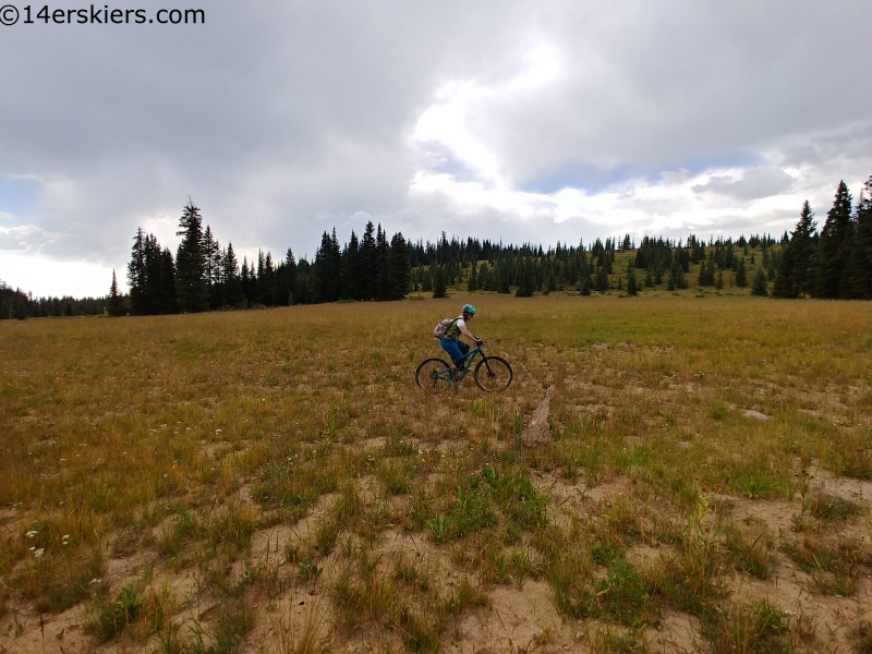 black mesa mountain biking west elks