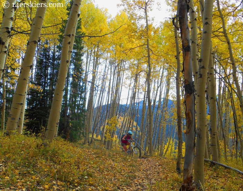 Susan Mol rounding out a scenic spot during a fall ride on the Dyke Trail in Crested Butte, CO