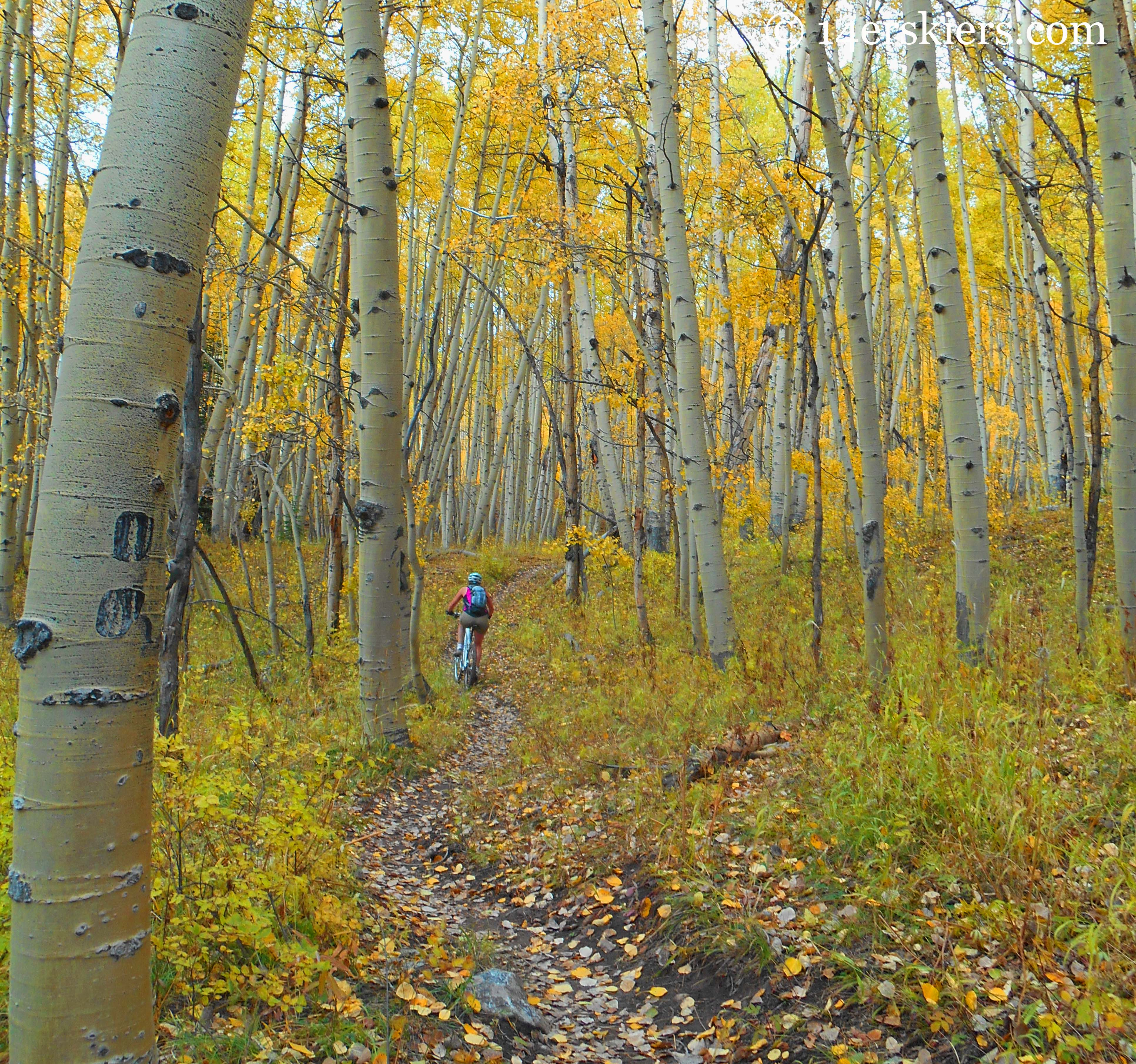 Susan Mol during a fall ride on the Dyke Trail in Crested Butte, CO