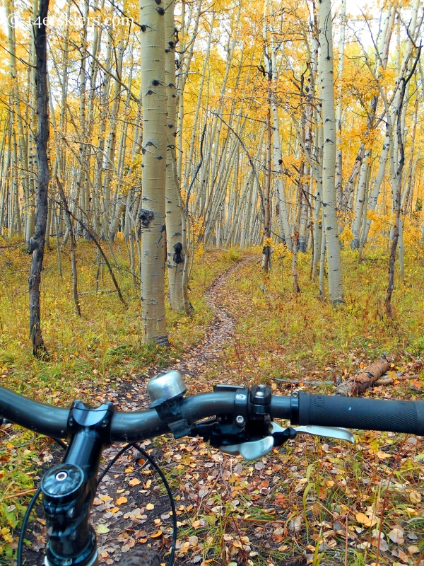 fall ride on the Dyke Trail