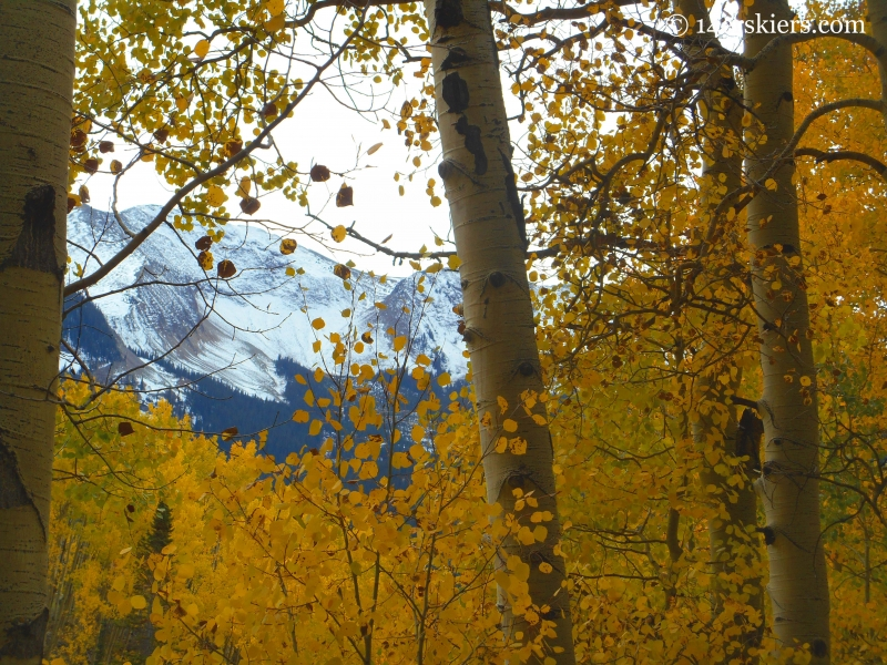 fall ride on the Dyke Trail near Crested Butte, CO