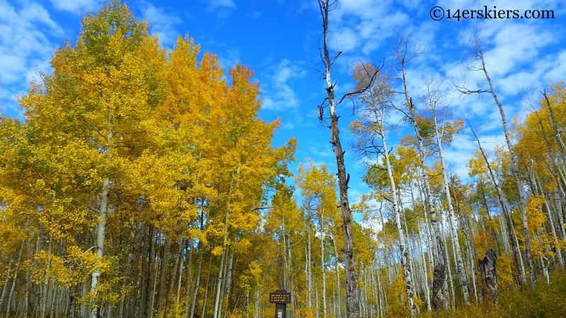 Dyke Trail near Crested Butte in the fall.