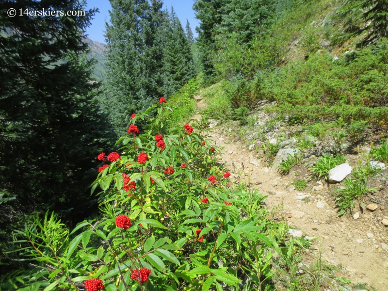 Hiking East Maroon Pass Trail