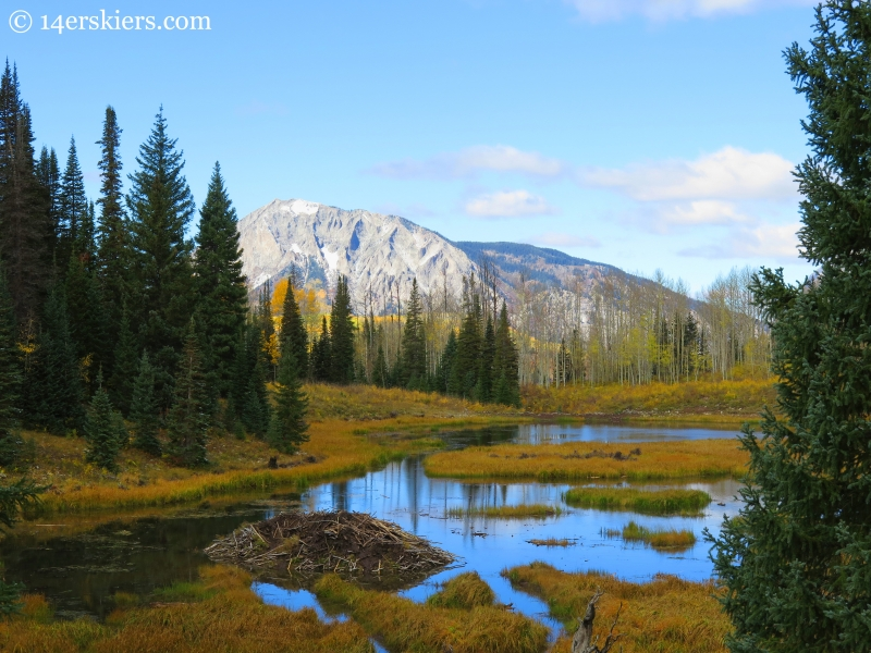 beaver ponds in the fall near Crested Butte