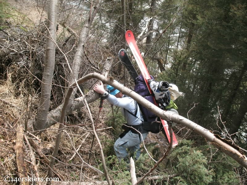 Backpacking over avalanche debris in the trail, with skis.