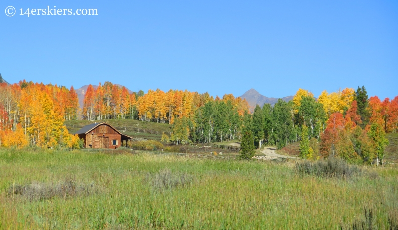 Stable in fall near Crested Butte