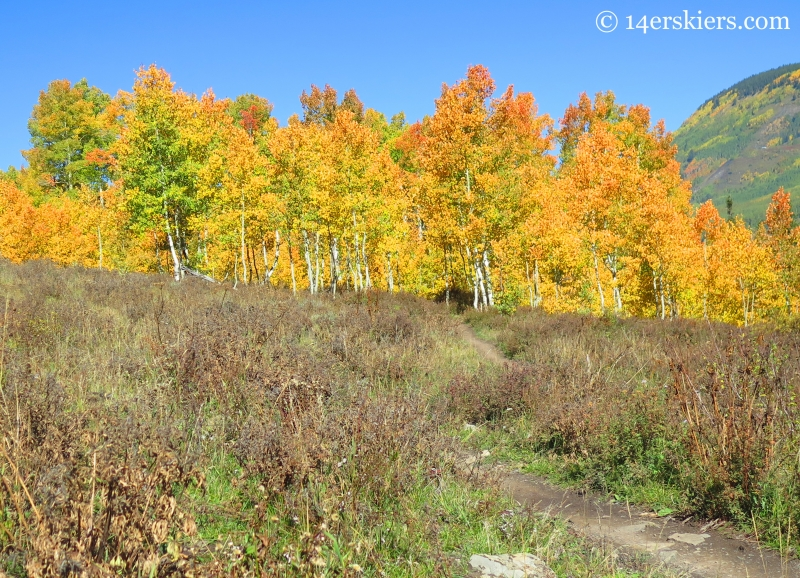 Lower Loop trail in fall near Crested Butte