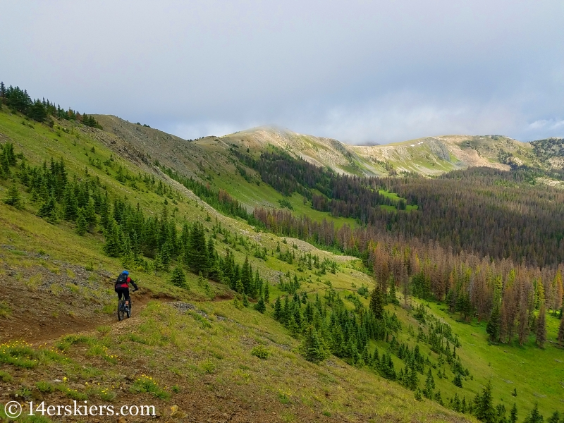 Mountain biking Fooses Creek off the Monarch Crest in Colorado.