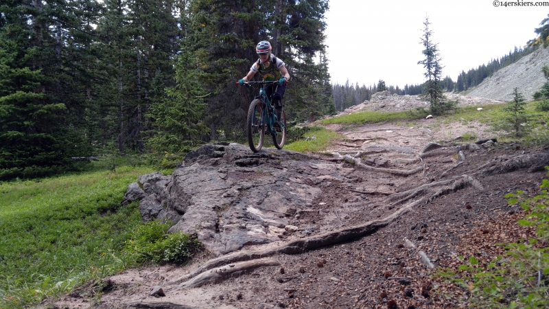 rocks and roots and bikes