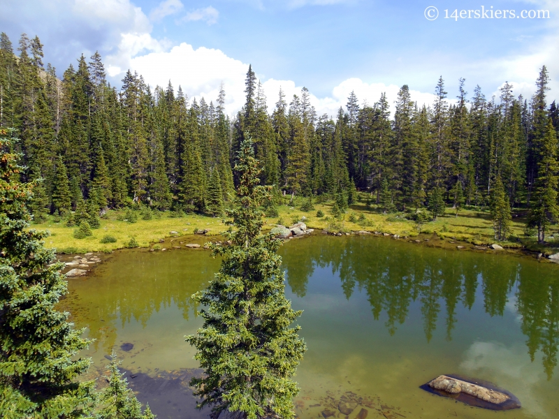 small lake near Lamphier Lake
