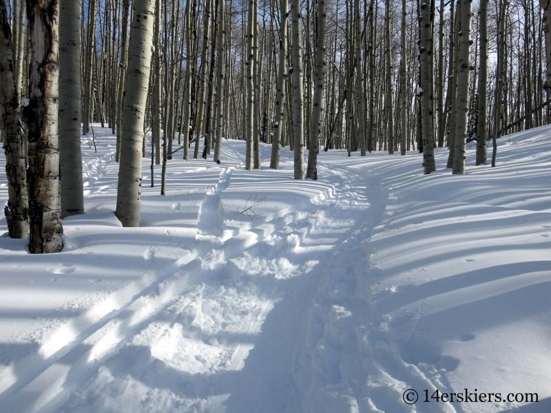 Huntsman Ridge Skin Track