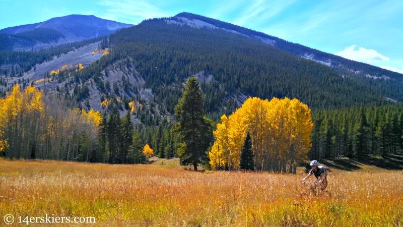 Mountain biking on Carbon Creek Trail near Crested Butte.