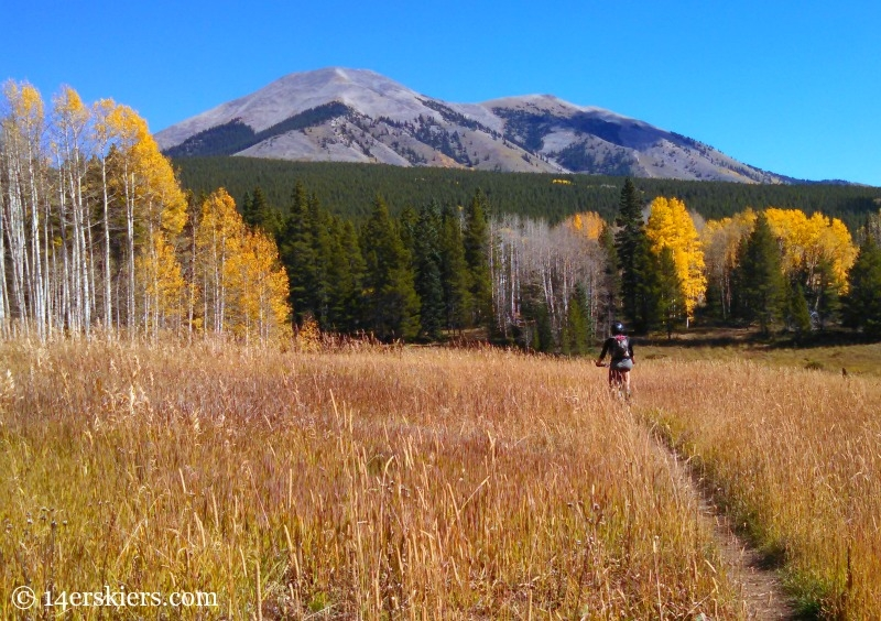 Mountain biking on Carbon Creek Trail near Crested Butte.