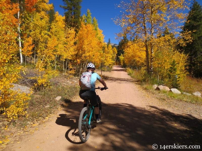 Mountain biking at Whitepine.