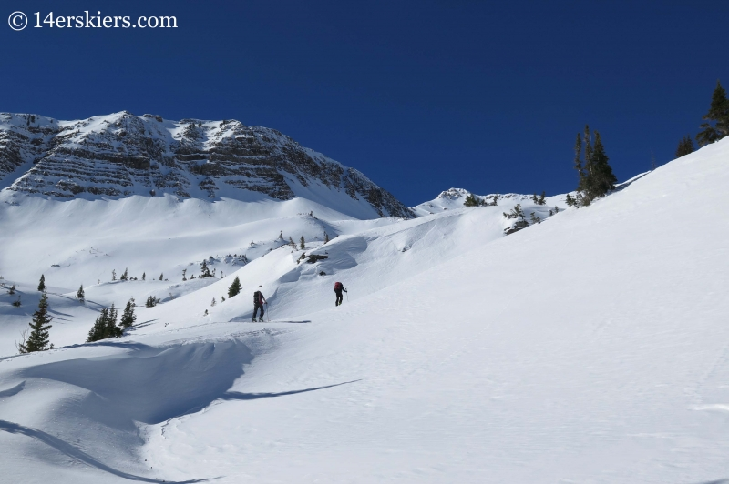 skinning towards Cascade