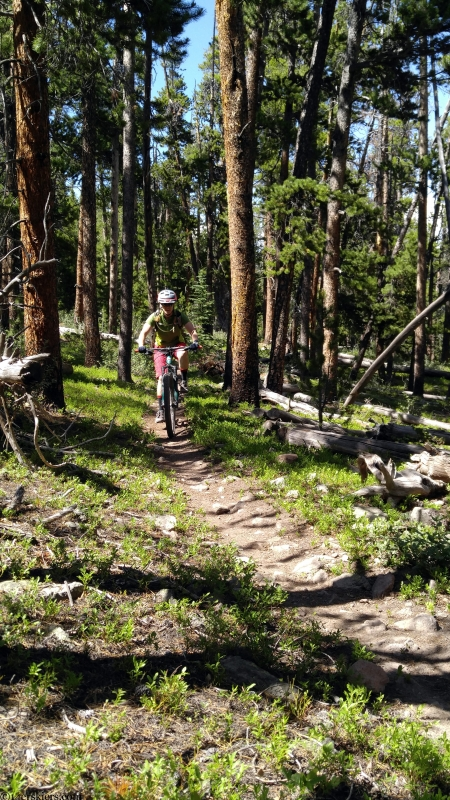 mountain biking near needle creek reservoir