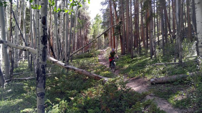dutchman trail gunnison colorado
