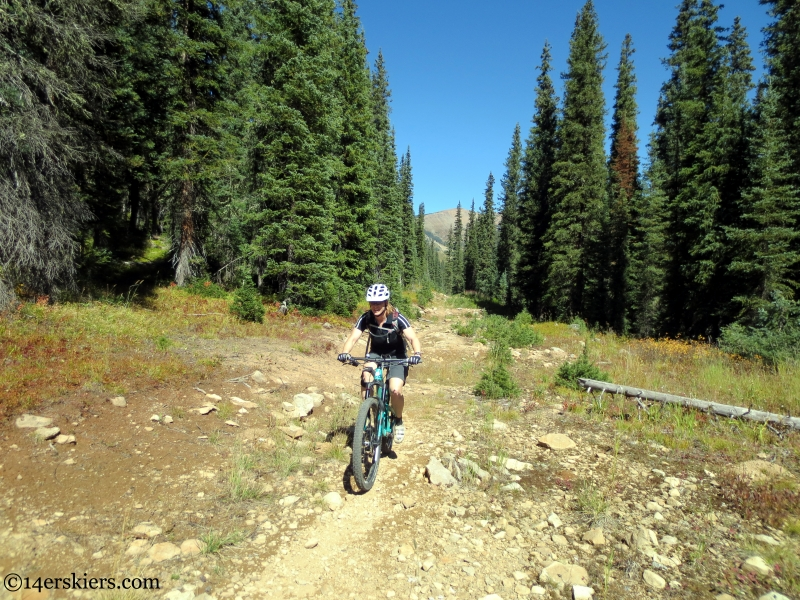 mountain biking the lily lake trail near crested butte
