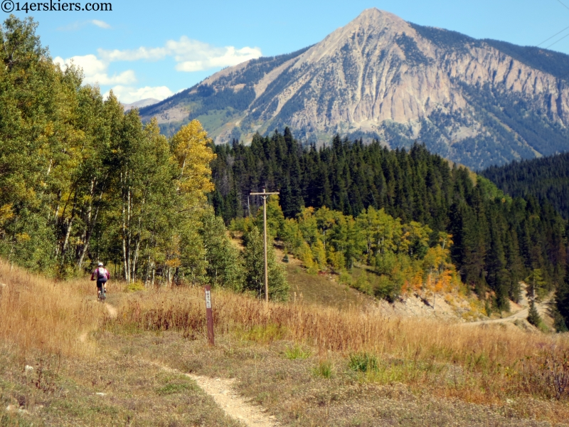 Wagon trail crested butte