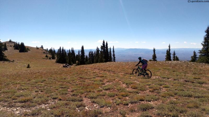 TR: Mountain Biking McIntyre to Alder to Fossil Ridge